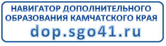 https://dop.sgo41.ru/